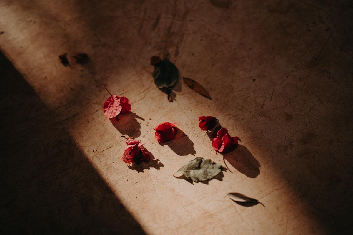 Elopement marrakech latw5 47 1 - Wedding - Désert d'Agafay et jardin Majorelle - Un elopement à Marrakech
