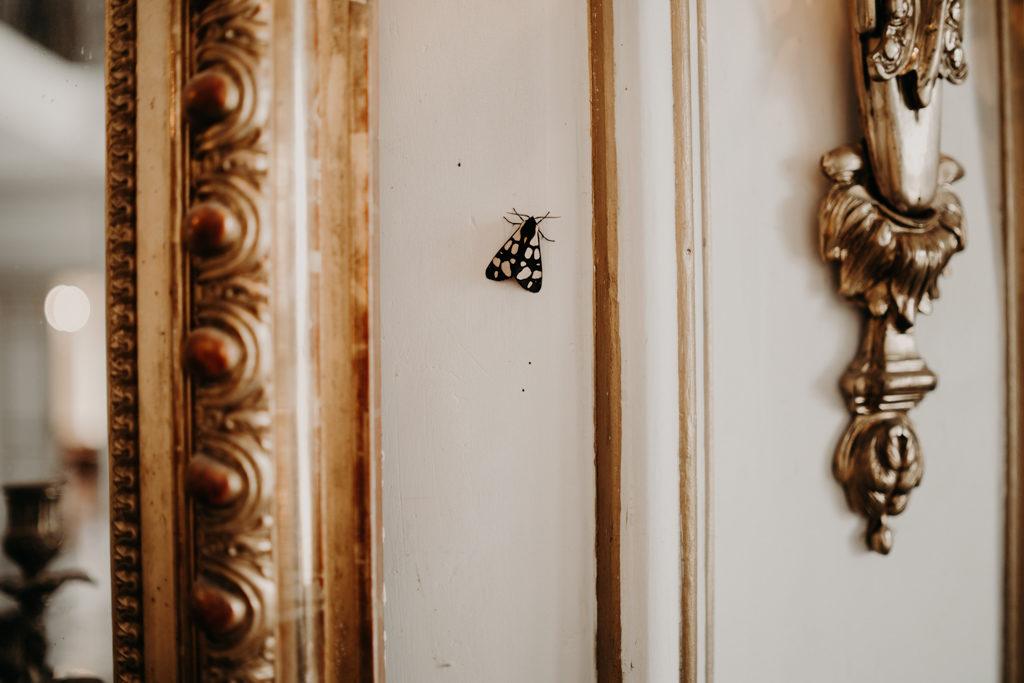 LaureneAndTheWolf Chateau Robernier 22 1024x683 - Mariage au Château de Robernier